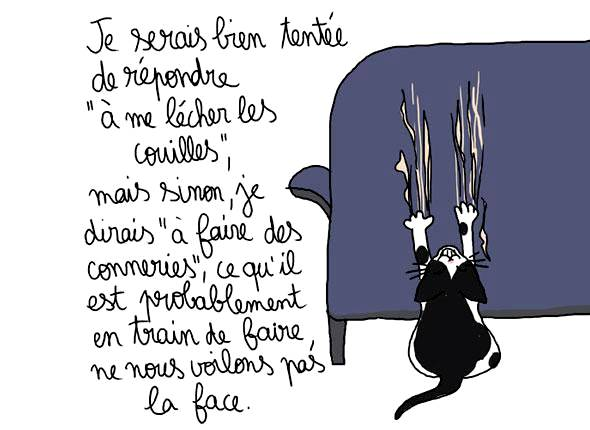 le-chat-de-la-blogueuse_5-diaporama